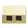 Surface Mount Box 2 Port